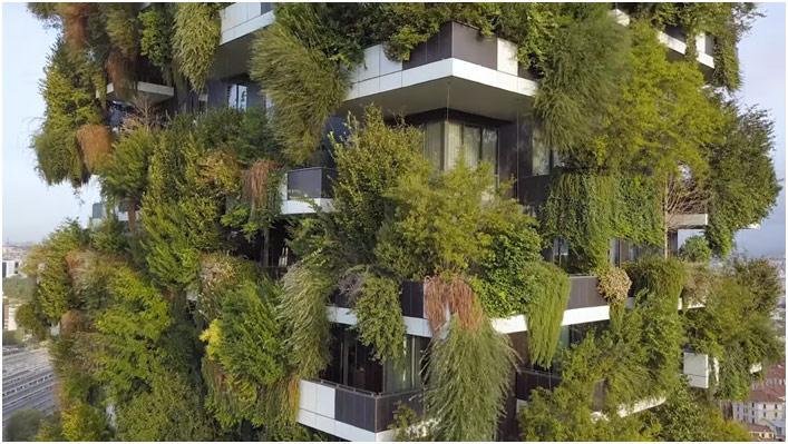 Šta je organska arhitektura