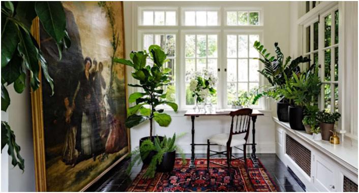 Luksuzna soba sa prozorom